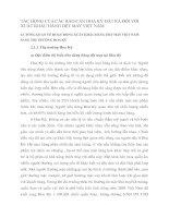 TÁC ĐỘNG CỦA CÁC RÀO CẢN HOA KỲ ĐẶT RA ĐỐI VỚI XUẤT KHẨU HÀNG DỆT MAY VIỆT NAM