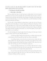 CƠ SỞ LÝ LUẬN VỀ CHI PHÍ HOẠT ĐỘNG VÀ KIỂM TOÁN CHI PHÍ HOẠT ĐỘNG TRONG KIỂM TOÁN TÀI CHÍNH