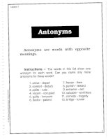 Vocabulary Builder - Antonyms