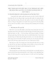 THỰC TRẠNG KẾ TOÁN TIÊU THỤ VÀ XÁC ĐỊNH KẾT QUẢ TIÊU THỤ HÀNG HÓA TẠI CÔNG TY CỔ PHẦN TẬP ĐOÀN ĐẦU TƯ TMCN VIỆT Á