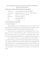 THỰC TRẠNG KHẢ NĂNG CẠNH TRANH CỦA CÔNG TY  BÓNG ĐÈN PHÍCH NƯỚC RẠNG ĐÔNG