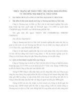 THỰC TRẠNG KẾ TOÁN TIÊU THỤ HÀNG HOÁ Ở CÔNG TY THƯƠNG MẠI DỊCH VỤ THÁI VINH