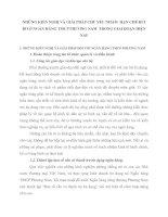 NHỮNG KIẾN NGHỊ VÀ GIẢI PHÁP CHỦ YẾU NHẰM  HẠN CHẾ RỦI RO Ở NGÂN HÀNG TMCP PHƯƠNG NAM  TRONG GIAI ĐOẠN HIỆN NAY