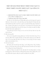 MỘT SỐ GIẢI PHÁP HOÀN THIỆN ĐÀO TẠO VÀ PHÁT TRIỂN NGUỒN NHÂN LỰC TẠI CÔNG TY ĐIỆN LỰC 1