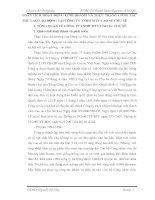 PHÂN TÍCH HOẠT ĐỘNG KINH DOANH VÀ THỰC TRẠNG CÔNG TÁC THÙ LAO LAO ĐỘNG TẠI CÔNG TY TNHH MTV CAO SU CHƯ SÊ