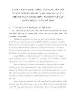THỰC TRẠNG HOẠT ĐỘNG TÍN DỤNG ĐỐI VỚI DOANH NGHIỆP NGOÀI QUỐC DOANH TẠI CHI NHÁNH NGÂN HÀNG NÔNG NGHIỆP VÀ PHÁT TRIỂN NÔNG THÔN MỸ HÀO