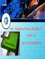 Slide lập kế hoạch E marketing TMĐT cho sản phẩm Razer Gameing mouse của công ty Razer