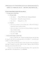 TỔNG QUAN VỀ TÌNH HÌNH SẢN XUẤT KINH DOANH CỦA CÔNG TY TNHH SẢN XUẤT - THƯƠNG MẠI HỒNG HÀ
