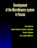 Developmentof the Microfinance system in Russia