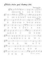Bài hát chiều trên quê hương tôi - Trịnh Công Sơn (lời bài hát có nốt)