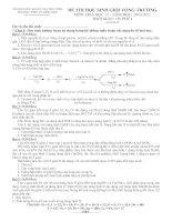 Đề và đáp án chi tiết HSG 2010-2011