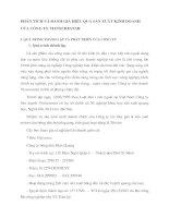 PHÂN TÍCH VÀ ĐÁNH GIÁ HIỆU QUẢ SẢN XUẤT KINH DOANH CỦA CÔNG TY VIETSURESTAR