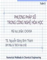 Phương pháp giải phương trình và hệ phương trình phi tuyến