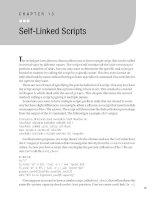 Self-Linked Scripts