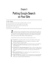 Putting Google Search on Your Site