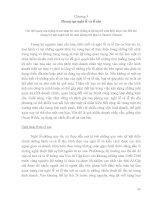 Giáo trình về Văn hóa kinh doanh quốc tế Chương 5