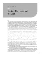 Testing - The Horse and the Cart