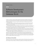 Software Development Methodologies for the Database World