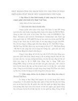 THỰC TRẠNG CÔNG TÁC HẠCH TOÁN NVL TẠI CÔNG TY PHÁT TRIỂN KINH TẾ KỸ THUẬT VIỆT NAM(DETESCO VIỆT NAM)