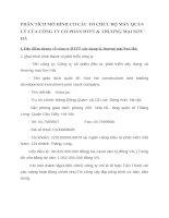 PHÂN TÍCH MÔ HÌNH CƠ CẤU TỔ CHỨC BỘ MÁY QUẢN LÝ CỦA CÔNG TY CỔ PHẦN ĐTPT & THƯƠNG MẠI SƠN HÀ