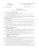 kế hoạch chủ nhiệm lớp (mẫu 3)