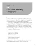 Client-Side Reporting Components