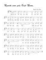 Bài hát người con gái Việt Nam - Trịnh Công Sơn (lời bài hát có nốt)