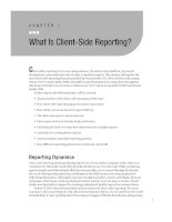 What Is Client-Side Reporting