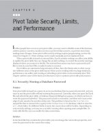 Pivot Table Security, Limits, and Performance