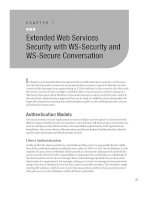 Extended Web Services Security with WS-Security and WS-Secure Conversation