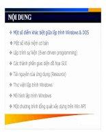 Một số điểm khác biệt giữa lập trình Windows & DOS