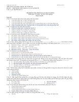 Đề thi kiểm tra Pháp Luật Đại cương - Đề số 4
