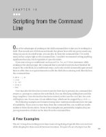 Scripting from the Command Line