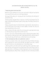 GIẢI PHÁP ĐA DẠNG HÓA SẢN PHẨM DỊCH VỤ TẠI CHI NHÁNH LÁNG HẠ