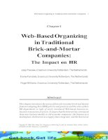 Web-Based Organizing in Traditional Brick-and-Mortar Companies - The Impact on HR