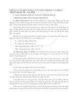 NHỮNG VẤN ĐỀ CƠ BẢN VỀ TĂNG TRƯỞNG VÀ PHÁT TRIỂN KINH TẾ - XÃ HỘI