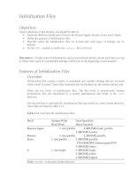 Initialization Files