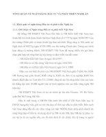 TỔNG QUAN VỀ NGÂN HÀNG ĐẦU TƯ VÀ PHÁT TRIỂN NGHỆ AN
