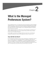 What Is the Managed Preferences System