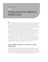 Introducing Server Controls in ASP.NET AJAX