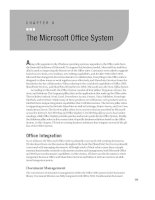 The Microsoft Office System