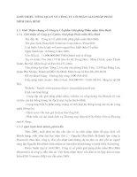 GIỚI THIỆU TỔNG QUAN VỀ CÔNG TY CỔ PHẦN GIẢI PHÁP PHẦN MỀM HOÀ BÌNH