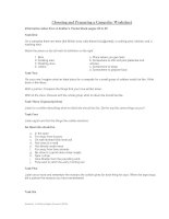 Choosing and Preparing a Campsite - Worksheet