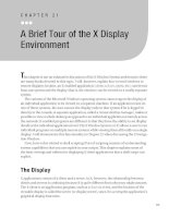 A Brief Tour of the X Display Environment