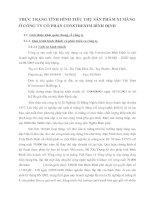 THỰC TRẠNG TÌNH HÌNH TIÊU THỤ SẢN PHẨM XI MĂNG Ở CÔNG TY CỔ PHẦN CONSTREXIM BÌNH ĐỊNH