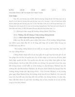 KIỂM ĐỊNH TÍNH HIỆU QUẢ CỦA THỊ TRƯỜNG CHỨNG KHOÁN VIỆT NAM