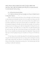 THỰC TRẠNG HOẠT ĐỘNG DUY TRÌ VÀ PHÁT TRIỂN THỊ TRƯỜNG TIÊU THỤ SẢN PHẨM TẠI CÔNG TY CỔ PHẨN BAO BÌ VÀ MÁ PHANH VIGLACERA