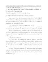 THỰC TRẠNG HOẠT ĐỘNG TIÊU THỤ SẢN PHẨM CỦA CÔNG TY CP TM DV TỔNG HỢP VIỆT NGA