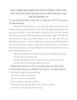 THỰC TRẠNG HOẠT ĐỘNG THANH TOÁN KHÔNG DÙNG TIỀN MẶT TẠI NGÂN HÀNG THƯƠNG MẠI CỔ PHẦN PHƯƠNG NAM CHI NHÁNH ĐỐNG ĐA