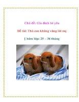 Chủ đề: Gia đình bé yêu - Đề tài: Thỏ con không vâng lời mẹ - Nhóm lớp: 25 – 36 tháng